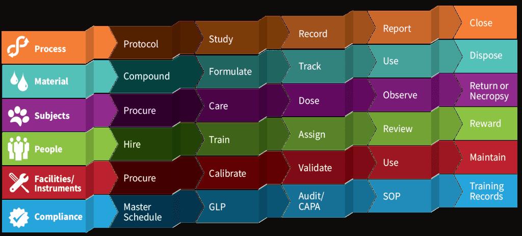 Этапы процесса Labwise с инфографикой